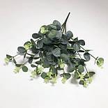 Евкаліпт букет зелений і блакитний 52 см, фото 2
