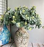 Евкаліпт букет зелений і блакитний 52 см, фото 6