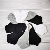 Носки женские М9 (размер 37-41)