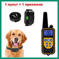 Электронный ошейник RT880 для дрессировки собак (1 пульт +1 приемник)