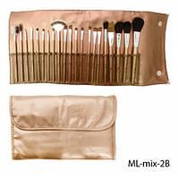 Набор кистей для макияжа ML-mix-2B (нейлон/соболь) 21шт.