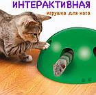 ОПТ Игрушка для кота интерактивная напольная со звуком и светом Поймай мышку Pop and Play, фото 6
