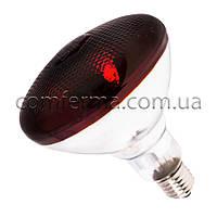 Лампа інфрачервона BR38 250 Вт черв. LO, фото 1