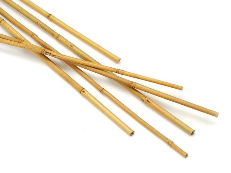 Бамбукова опора 0,9 м d - 8-10 мм