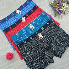 Трусы мужские боксеры стрейчевые х/б Indena underwear 85136 , в упаковке разные размеры), хлопок, 30031378