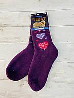 Шкарпетки  Nebat жіночі 36-39 размер фіолетовий