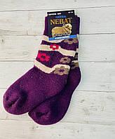 Шкарпетки  Nebat жіночі 36-39 размер фіолетовий2