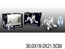 Робот-собака на радиоуправлении 619 на аккумуляторе