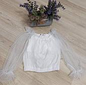 Блузка для девочек, 140-164 рр. Артикул: MDL4176