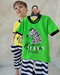 Летний комплект для мальчика футболка и бриджи Зебра