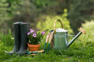 Інструменти для саду і дачі