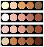 Палитра консилеров-корректоров 5 цв. Meis professional make-up artist MS0503-C, фото 2