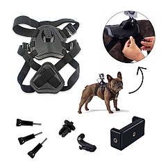 Набор креплений AIRON ACS-3 на собак для экшн-камер AIRON, GoPro, SONY, ACME, Xiaomi, SJCam, EKEN, ThiEYE