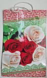 Пакет бумажный Большой вертикальный 25/37/8(артBV-012) (12 шт), фото 4