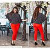 Брючный костюм с  блузой в горох, брюки красные