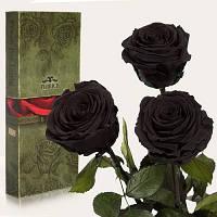 Florich Три долгосвежих розы в подарочной упаковке Черный бриллиант (7 карат на коротком стебле) Florich