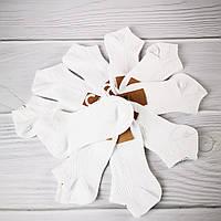 Носки женские короткие М20 (размер 37-41)