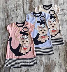 Оптом Детское Трикотажное Платье для Девочек 2-5 лет Турция