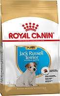 АКЦИЯ! Сухой корм Royal Canin Jack Russell Puppy для щенков, 3КГ + 0,8КГ корма в подарок!