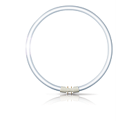 Лампа кольцевая PHILIPS TL 5С 55W/830  2GX13 (Китай), фото 1