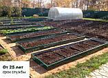 Грядки оцинкованные Mavens, коричневые, 120 х 360 х 38 см, бордюр, ограждение (от производителя), фото 3