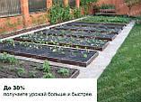 Грядки оцинкованные Mavens, коричневые, 120 х 360 х 38 см, бордюр, ограждение (от производителя), фото 4