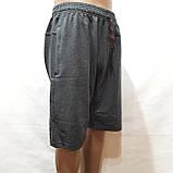 Шорти чоловічі трикотажні літні (великих розмірів) 56, 58,60, 62,64 відмінної якості, фото 4