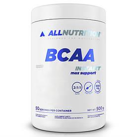 BCAA AllNutrition BCAA Instant Max Support, 500 грамм Апельсин