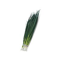 Вулкан семена лука на перо Kitano Seeds 100 г