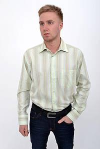 Рубашка 50PD9021-3 цвет Салатово-желтый