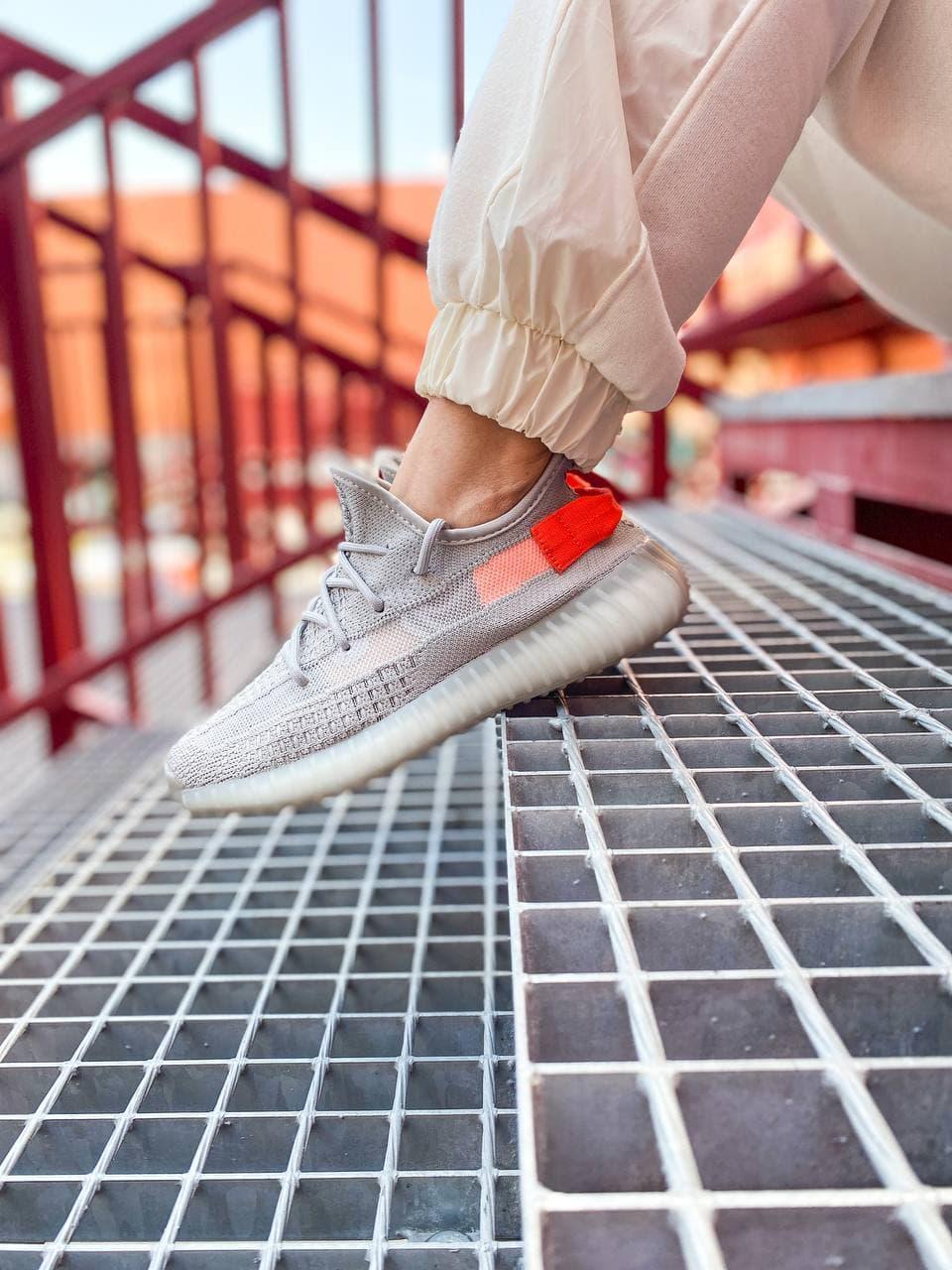 Женские кроссовки Adidas Yeezy Boost 350 V2 Tail Light (серые) К2770 качественные крутые обувь