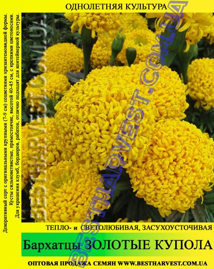 Семена Бархатцы Золотые Купола 0,5 кг