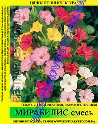 Семена Мирабилис смесь 50 г