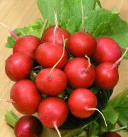 Семена редиса Сора, Nunhems (Нунемс), упаковка 250 г