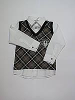 Обманка(рубашка+жилет) для полных мальчиков Турция 104р-134р