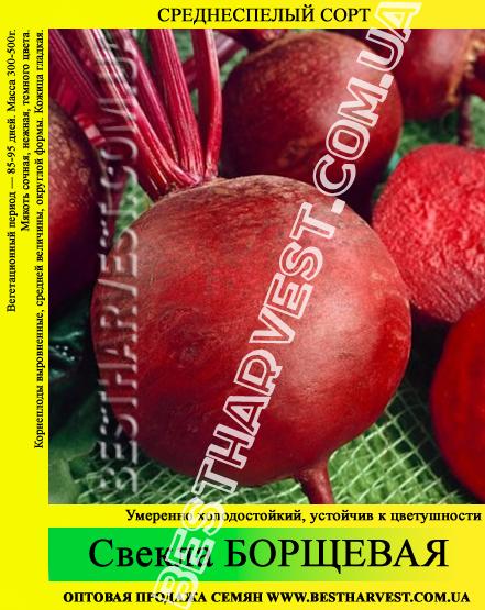 Семена свеклы «Борщевая» 25 кг (мешок)