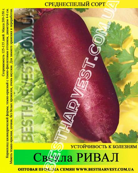 Семена свеклы «Ривал» 25 кг (мешок)