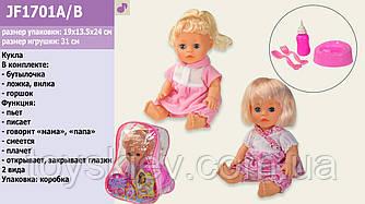Лялька опції JF1701A B (72шт 2) 2 види, МУЗ: мама-тато, сміється,плаче, п'є-пісяє,з бут,горщиком,вил