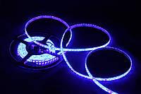 Светодиодная лента голубой цвет Стандарт