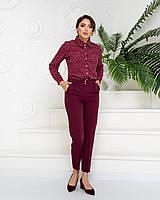 Стильні штани арт. 601 + нарядна блузка в горох арт. 600 / колір бордо - ваш готовий образ!
