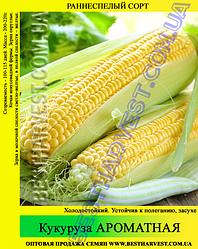 Насіння кукурудзи «Ароматна» 1 кг