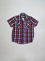 Рубашка для мальчика Glo-story 110р-134р
