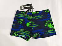Пляжні плавки для мальчиков (34-42) купити оптом від складу 7 км
