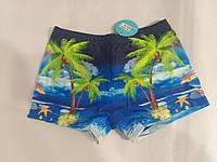 Пляжные плавки подросток (38-44) оптом купить от склада 7 км, фото 1