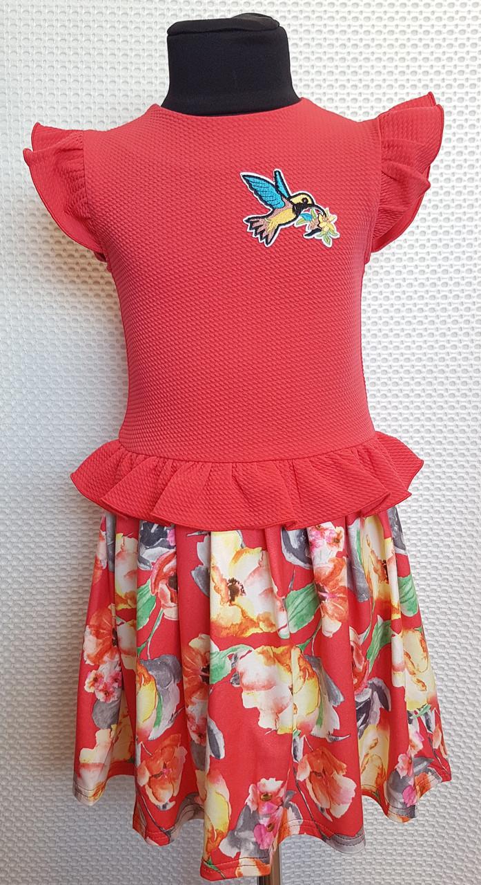 Платье на девочку Колибри 104,110,116, 122 см коралловый