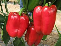 Семена перца Даймос F1 1000 сем