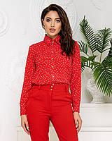 Нарядна блузка в горох арт. 600 + стильні штани арт. 601 / колір червоний - ваш готовий образ!