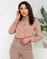 Нарядна блузка в горох арт. 600 + стильні штани арт. 601 / колір кава - ваш готовий образ!
