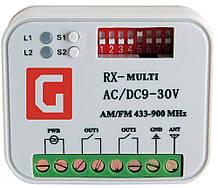 Приймач універсальний зовнішній 2-канальний Gant RX Multi