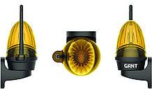 Универсальная проблесковая сигнальная лампа Gant Pulsar mini